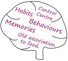 Control Centre, Habits & Behaviours