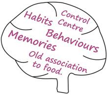 Control Centre, Habits & Behaviours